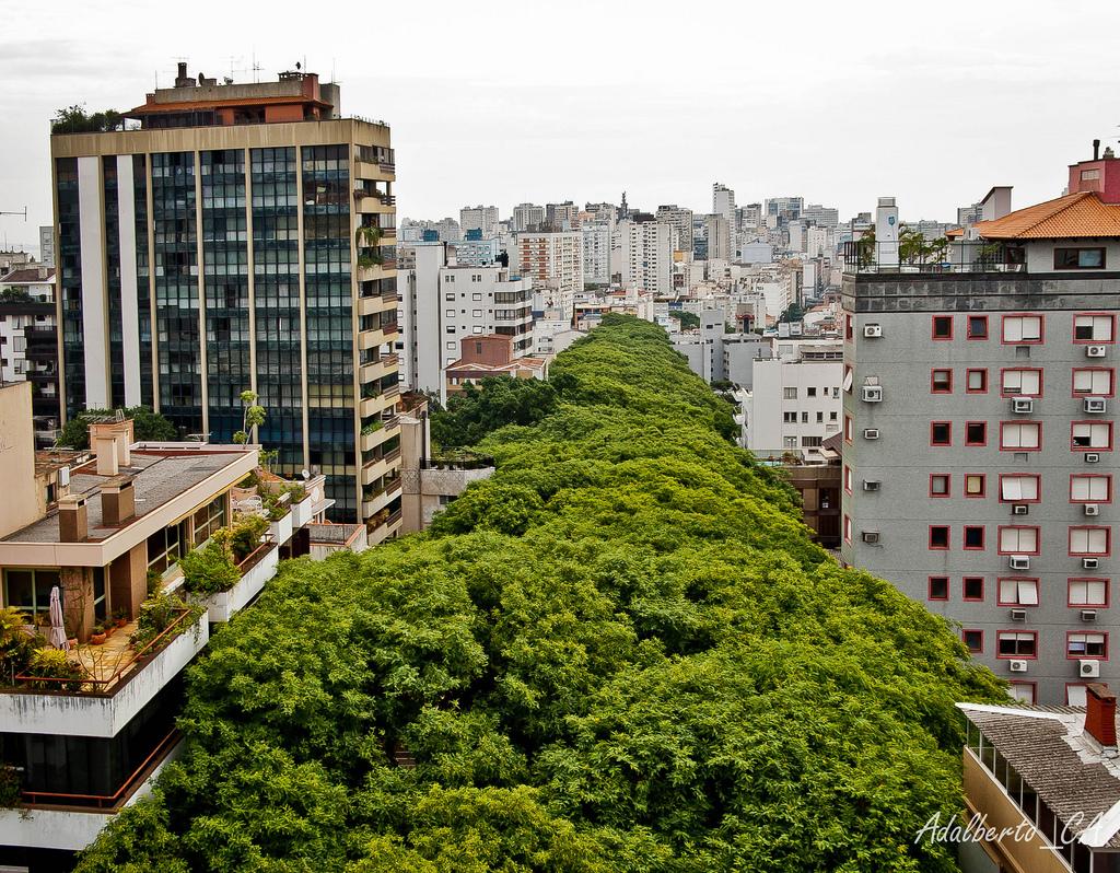 Rua de Carvalho