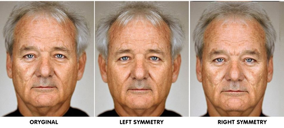 faces-photoshopped-to-reveal-perfect-symmetrical-features-63433-954x431