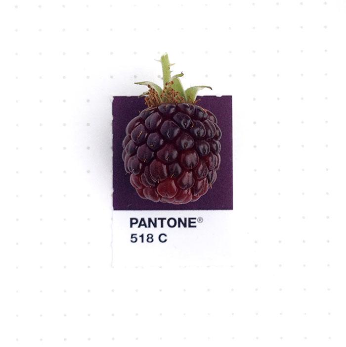 pantone-matching-system-everyday-objects-tiny-pms-project-inka-mathews-houston-texas-14