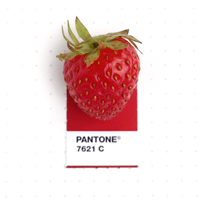 pantone-matching-system-everyday-objects-tiny-pms-project-inka-mathews-houston-texas-6