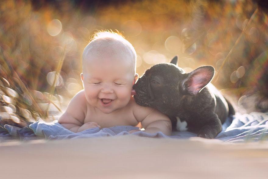 baby-dog-friendship-french-bulldog-ivette-ivens-1