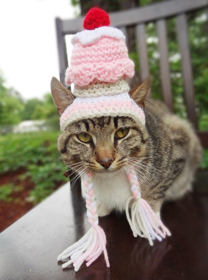 crochet-handmade-hats-pets-iheartneedlework-12__700