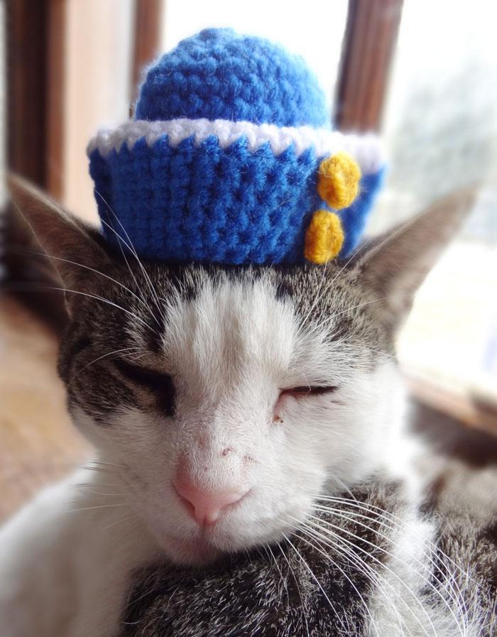 crochet-handmade-hats-pets-iheartneedlework-15__700