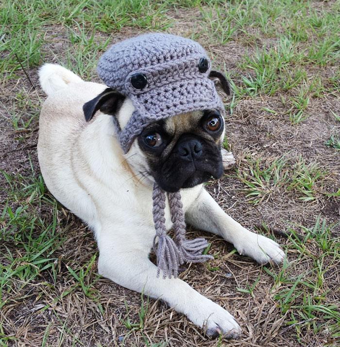 crochet-handmade-hats-pets-iheartneedlework-20__700