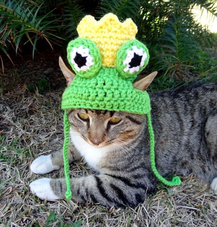 crochet-handmade-hats-pets-iheartneedlework-5__700