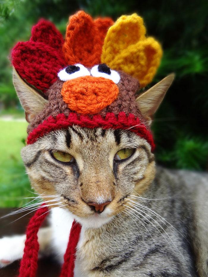 crochet-handmade-hats-pets-iheartneedlework-8__700