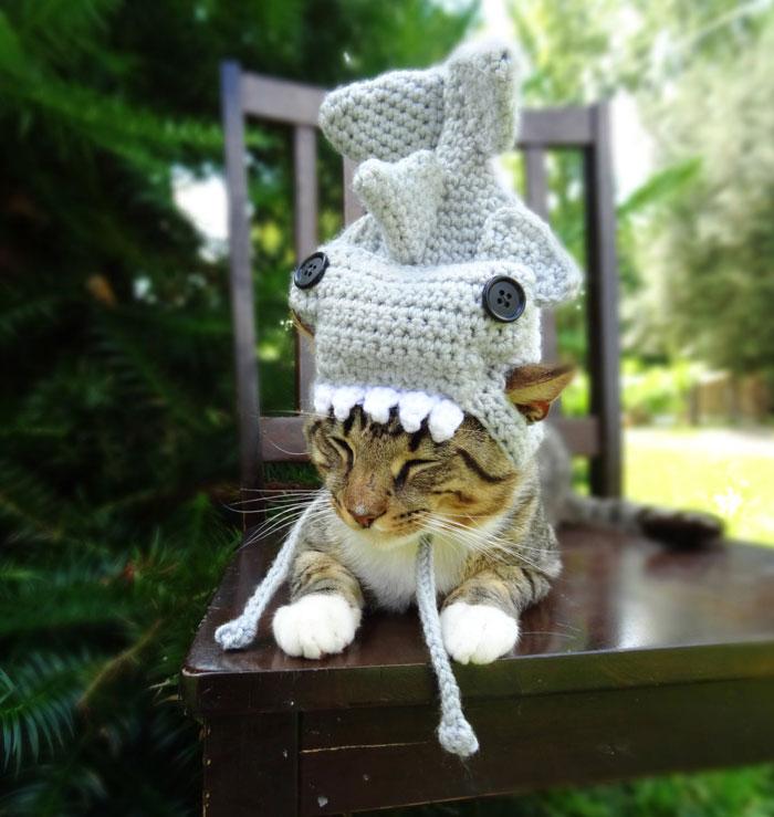 crochet-handmade-hats-pets-iheartneedlework-9__700