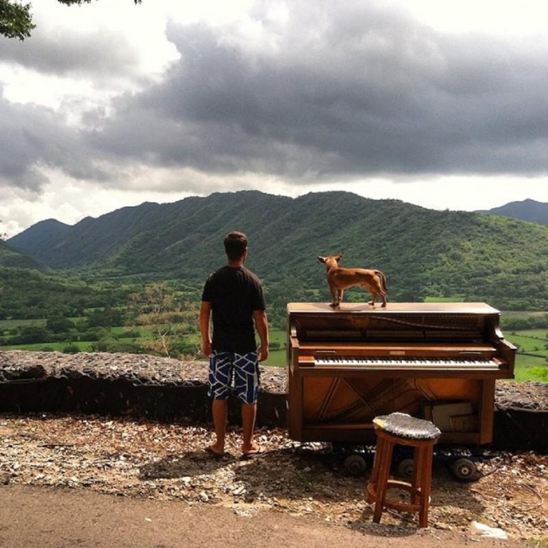 DOTANNEGRIN_PIANO