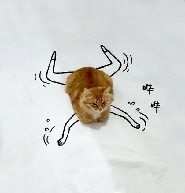 Too-Crazy-The-new-portrait-of-lovely-Cat-through-creative-drawing-of-young-people__605