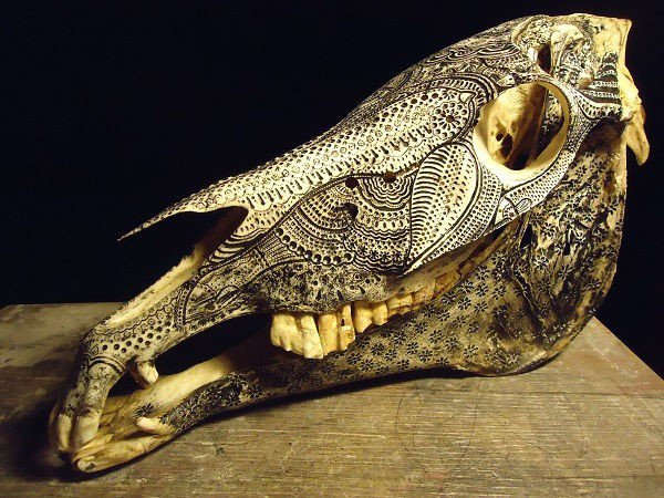 animal-bone-art2-600x450